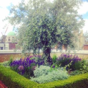 Beautiful garden on the Rooftip
